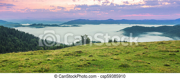 Beautiful summer landscape in the mountains. - csp59385910