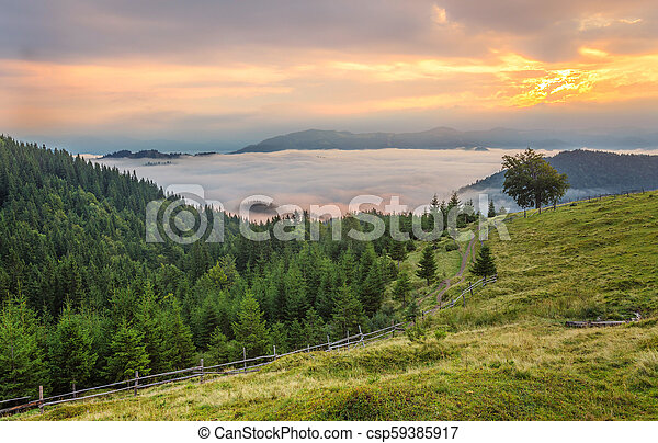 Beautiful summer landscape in the mountains. - csp59385917