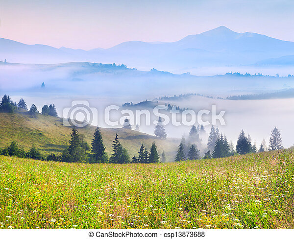 Beautiful summer landscape in the mountains - csp13873688