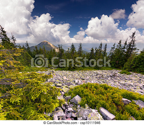 Beautiful summer landscape in the rocky mountains - csp10111946
