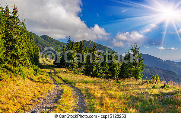 Beautiful summer landscape in the mountains - csp15128253