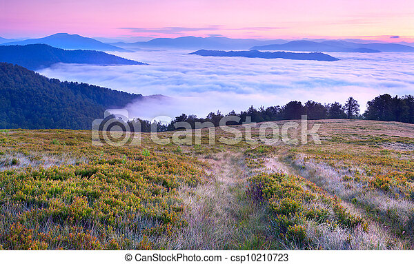 Beautiful summer landscape in the mountains. Sunrise  with clouds under the feet - csp10210723