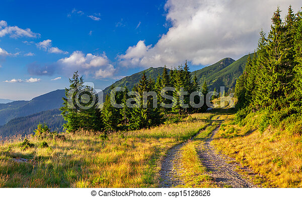 Beautiful summer landscape in the mountains - csp15128626