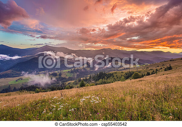 Beautiful summer landscape in the mountains. - csp55403542