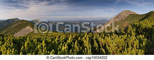 Beautiful summer landscape in the mountains - csp10034202
