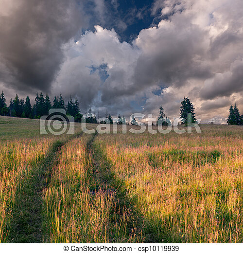 Beautiful summer landscape in the mountains - csp10119939
