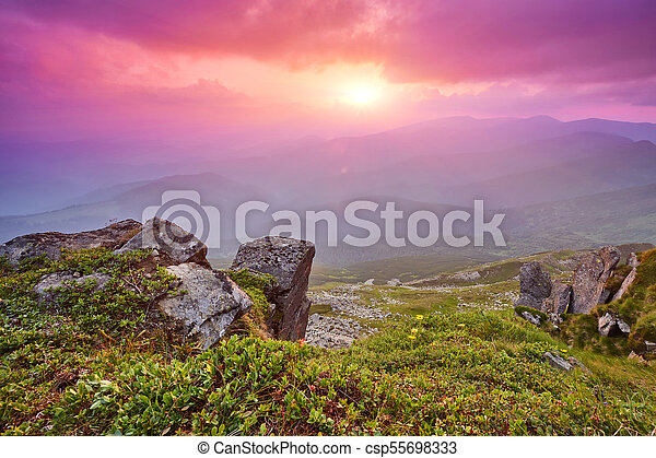 Beautiful summer landscape in the mountains. - csp55698333