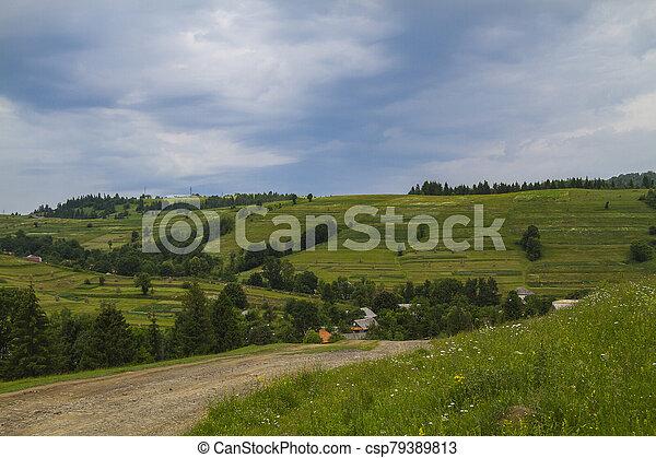 Beautiful summer landscape - csp79389813