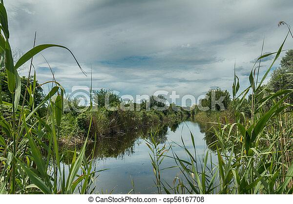 Beautiful summer landscape with little river. High green grass - csp56167708
