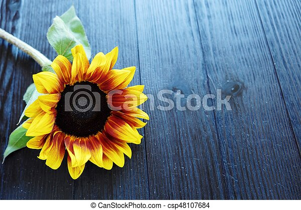 Beautiful summer sunflowers on brown background - csp48107684