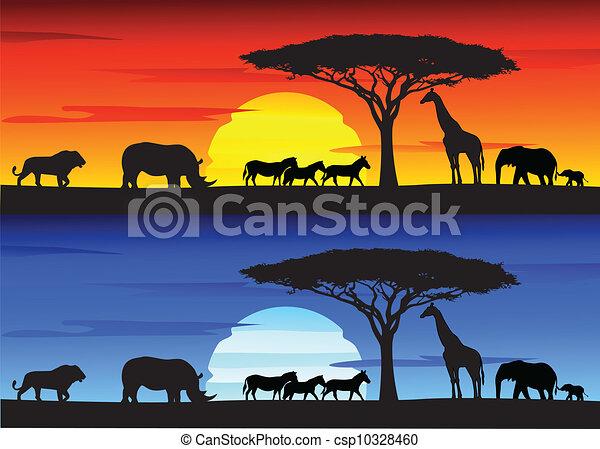 Beautiful sunset background on Afri - csp10328460