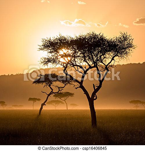 Beautiful Sunset in Massai Mara - csp16406845