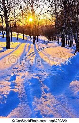 Beautiful sunset in winter park - csp6730220