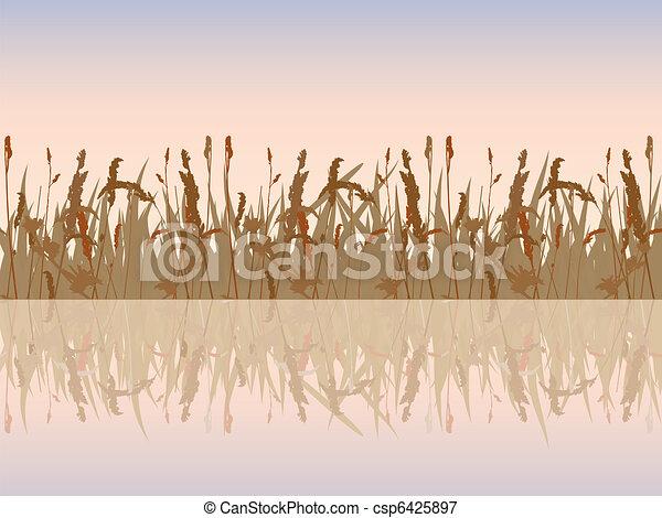 Beautiful sunset meadow waterside.  - csp6425897