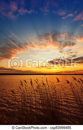 Beautiful sunset on the river with reeds in the foreground. Vertical frame - csp83999485