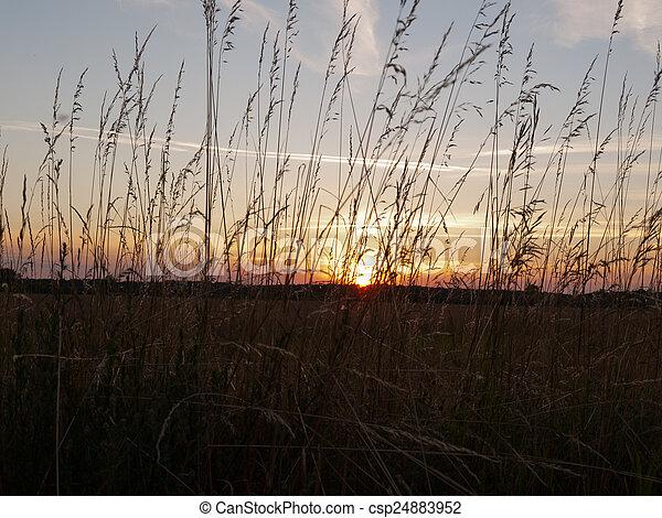 Beautiful sunset - csp24883952