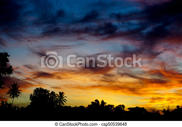 beautiful sunset - csp50539648
