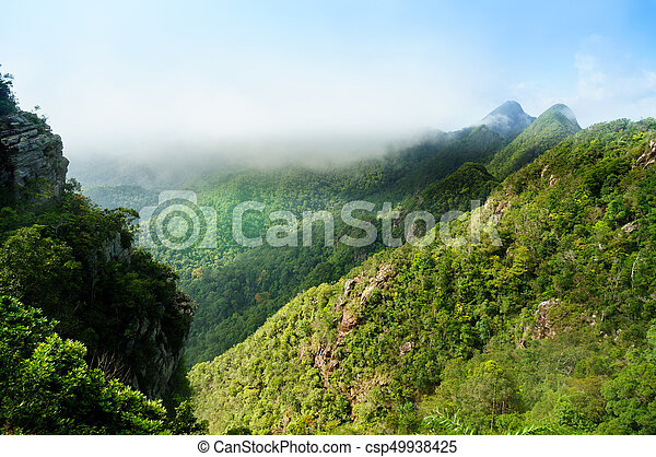 Beautiful tree covered mountains in Langkawi with fog rolling - csp49938425
