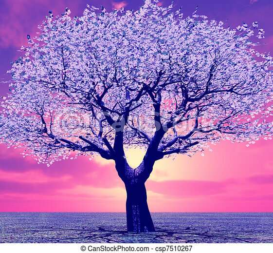 Beautiful Tree In The Sunset