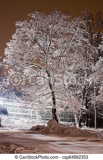 beautiful tree under the snow in winter park - csp64862353
