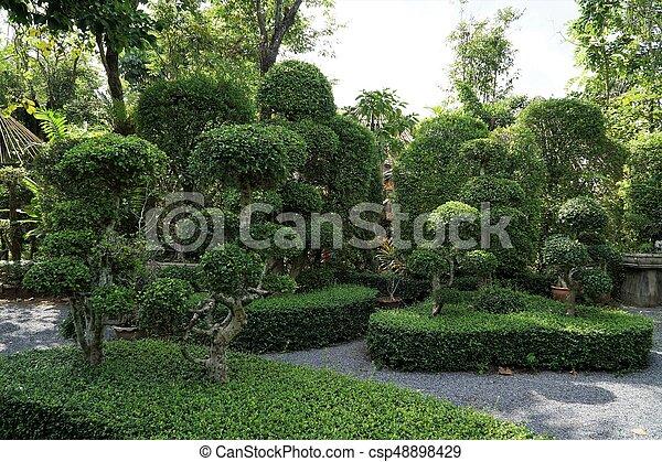 Beautiful trees in park - csp48898429
