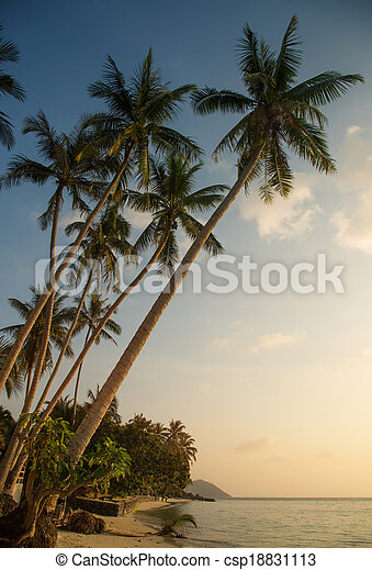Beautiful tropical beach in the evening - csp18831113