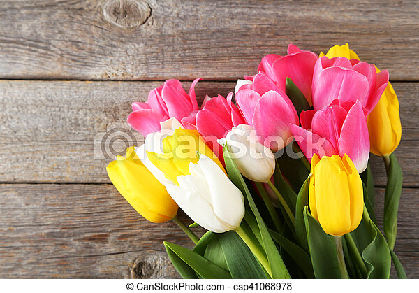 Beautiful tulips on grey wooden background - csp41068978