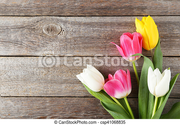 Beautiful tulips on grey wooden background - csp41068835