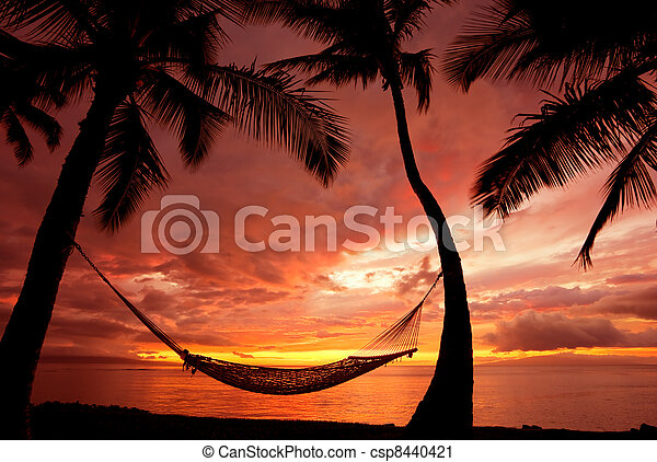 Beautiful Vacation Sunset, Hammock Silhouette with Palm Trees - csp8440421