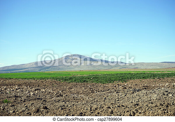 beautiful view of the mountains - csp27899604