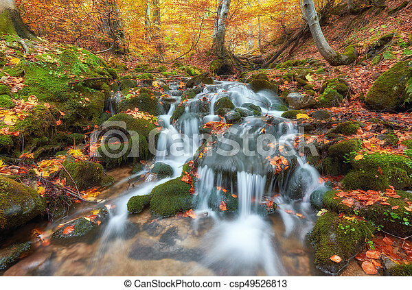Beautiful waterfall at mountain river in colorful autumn forest with red and orange leaves at sunset. - csp49526813