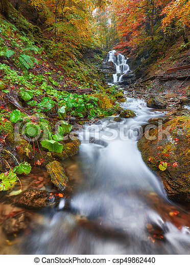 Beautiful waterfall at mountain river in colorful autumn forest with red and orange leaves at sunset. - csp49862440