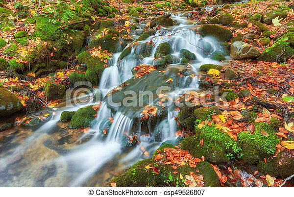 Beautiful waterfall at mountain river in colorful autumn forest with red and orange leaves at sunset. - csp49526807