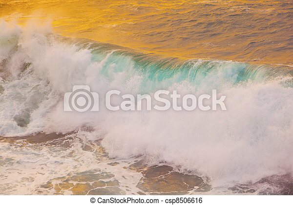 beautiful waves at the beach in sunset - csp8506616