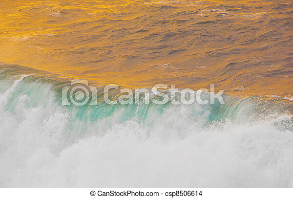 beautiful waves at the beach in sunset - csp8506614