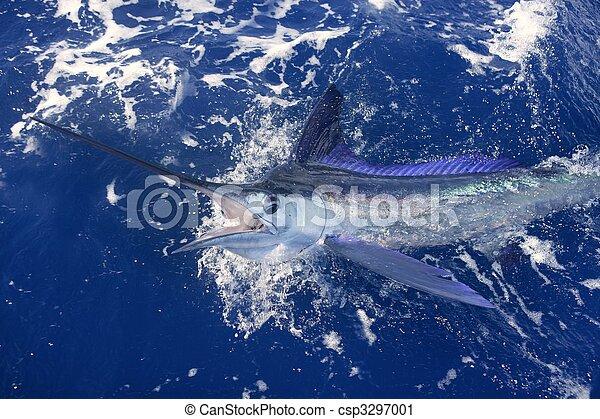 Beautiful white marlin real billfish sport fishing - csp3297001