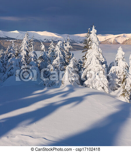 Beautiful winter landscape in the mountain - csp17102418