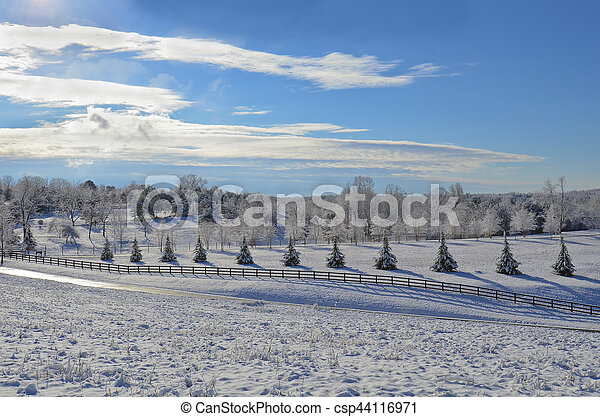 Beautiful Winter Landscape - csp44116971