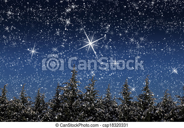 Beautiful winter landscape with snow covered trees at night - csp18320331