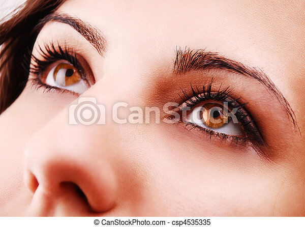 Beautiful woman eyes  - csp4535335