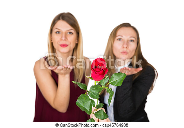 red rose with kiss