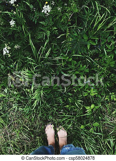 Beautiful women's feet on the background of summer grass - csp58024878