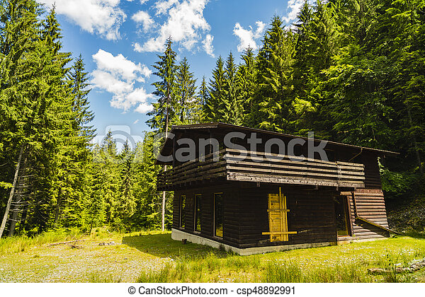 Beautiful wooden cottage in fir forest - csp48892991