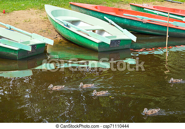 Beautiful wooden multicolored boats with oars on the beach for walks along the river, lake, sea, ocean in a nature park on the shore - csp71110444