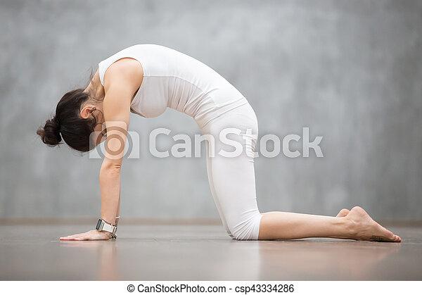beautiful yoga cat marjaryasana pose beautiful young
