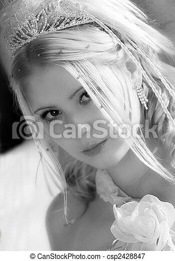 Beautiful young bride portrait - csp2428847