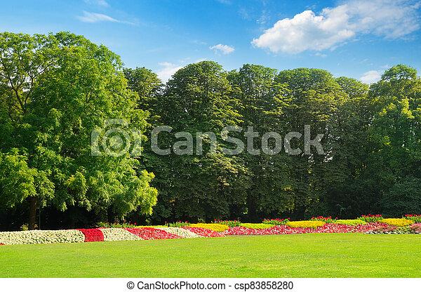 Beautifully manicured park garden in summer. - csp83858280
