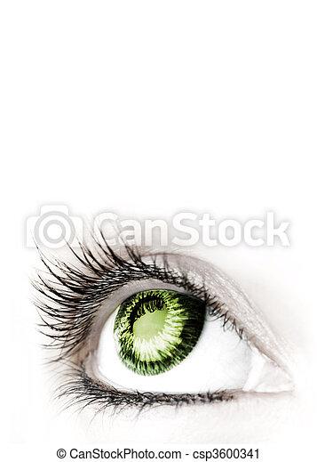 Beauty big eye. - csp3600341