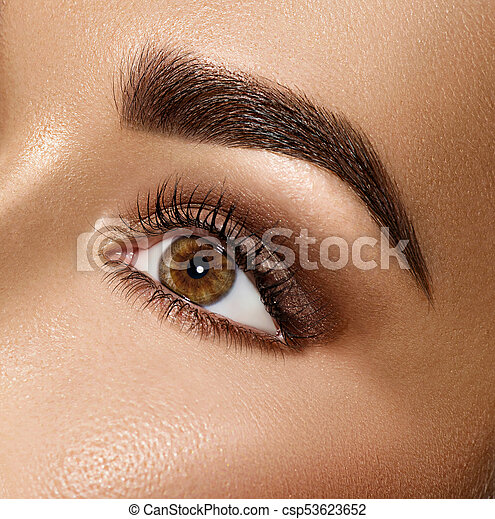 Beauty brunette woman eye with perfect makeup - csp53623652