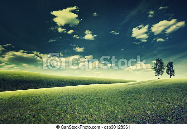 Beauty evening on the meadow. Abstract natural landscape - csp30128361